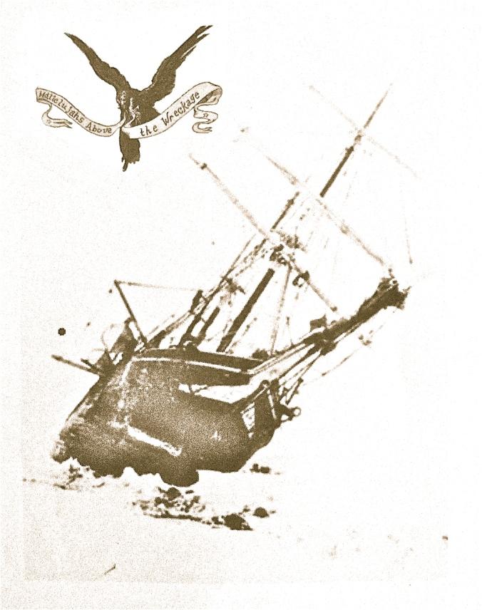 Hallelujahs Above the Wreckage